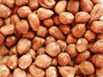 Closeup group of tasty and healthy hazelnuts Royalty Free Stock Image