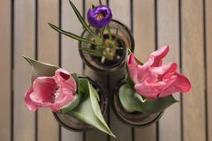 Grouping of Pink and Purple Tulips. Closeup Grouping of Pink and Purple Tulips in a glass vases on a wood table Stock Image