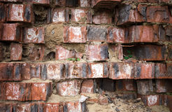 Closeup of grungy red brick wall. Stock Images