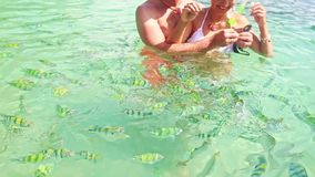 Closeup Guy Girl in Transparent Water Catch Stripy Fish. KRABI/THAILAND - DECEMBER 04 2014: Closeup caucasian girl guy stand in shallow transparent azure ocean stock video footage