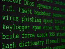 Hacker`s dictionary displayed on the computer screen royalty free stock image