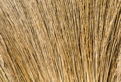 Closeup Hair Brown Broom Royalty Free Stock Photography