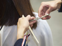 Closeup of hairdresser do haircut Royalty Free Stock Photography