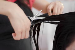 Closeup of a hairstylist cutting hair Stock Photo
