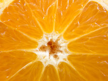 Closeup half orange Stock Images
