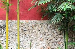 Closeup of half red half gray stone wall and bamboo Royalty Free Stock Photography