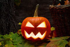 Closeup of halloween pumpkin Royalty Free Stock Photography