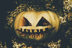 Closeup Of Halloween Pumpkin With Scary Face Royalty Free Stock Photos