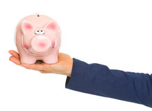 Closeup on hand of business woman holding piggy bank Royalty Free Stock Photo