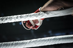 Closeup hand of fighter MMA in glove Stock Image