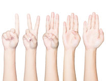 Closeup hand gesture count one to five isolated clipping p Stock Image