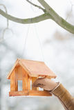 Closeup on hand hanging bird feeder on tree Stock Photography