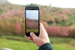 Closeup hand hold phone taking landscape photo. Close-up hand hold phone taking landscape photo Royalty Free Stock Photos