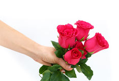 Closeup of a hand holding red roses bouquet Stock Photos