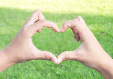 Closeup hand make heart shaped on green grass with sun light for Royalty Free Stock Photography