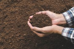 Closeup hand of person holding abundance soil for agriculture or Royalty Free Stock Image