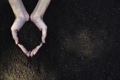 Closeup hand of person holding abundance soil for agriculture or planting peach.  royalty free stock images