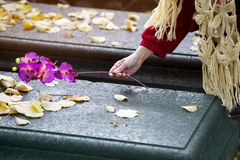 Closeup of hand putting flower on grave Royalty Free Stock Images