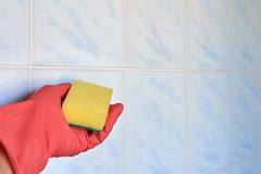 Hand in glove with sponge Royalty Free Stock Image