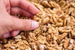 Closeup hand with walnuts in a pile Royalty Free Stock Photos