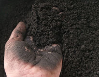Closeup of hand working with rich soil royalty free stock photos