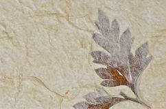 Closeup of handmade paper texture background Royalty Free Stock Photography