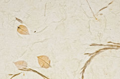 Closeup of handmade paper texture background with petals Royalty Free Stock Photos