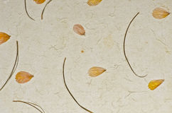 Closeup of handmade paper texture background with petals Stock Image