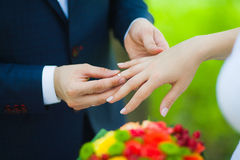 Closeup of hands of bridal couple with wedding rings Stock Photography