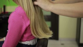 Professional hairstylist arranging child`s hair stock video