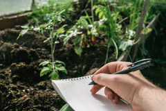 Closeup hands of greenhouse worker taking notes in seedlings in nursery Stock Photo