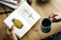 Closeup of hands holding open novel and coffee cup Stock Photos