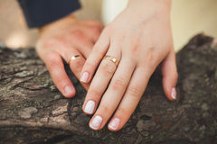 Closeup of hands newlyweds. Hands of the newlyweds with wedding rings Stock Photo