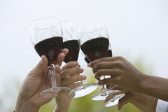 Closeup Of Hands Toasting Wine. Cropped image of hands toasting wine against sky Royalty Free Stock Photo