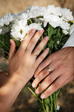 Closeup of hands with wedding rings Stock Photo