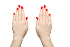 Closeup of hands a young woman with long red manicure on nails against white background. Hands of a young woman with long red manicure on nails against white Stock Photography