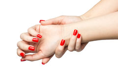 Closeup of hands a young woman with long red nails manicure on white background Royalty Free Stock Images