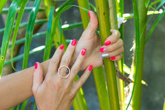 Closeup of hands of a young woman with red manicure on nails against natural green tropical background. Stock Images