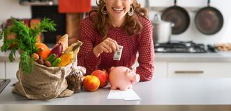 Closeup on happy young housewife putting money into piggy bank. After shopping on local market Royalty Free Stock Photography
