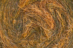 Closeup of the hay bale Royalty Free Stock Photo