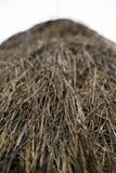 Closeup on a hay stack Stock Photos