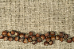 Closeup hazelnuts on burlap Royalty Free Stock Photography