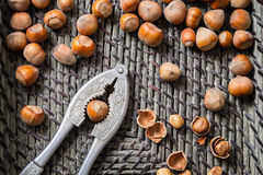 Closeup hazelnuts with nutcracker and nutshells Stock Photography