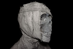 Closeup head of mummy on background Stock Image