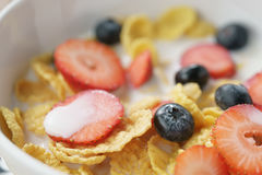 Closeup of healthy breakfast with corn flakes and berries in white bowl. Macro shot Stock Images