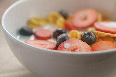 Closeup of healthy breakfast with corn flakes and berries in white bowl. Slightly toned photo Stock Photography