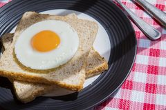 Healthy breakfast served above the dining table. Closeup of healthy breakfast with a fried egg and wheat breads on the plate, served above the dining table Royalty Free Stock Photography