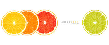 Closeup of Healthy Fresh Citrus Fruits. Template Design Royalty Free Stock Images