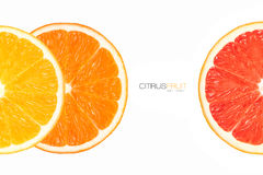 Closeup of Healthy Fresh Citrus Fruits. Template Design Stock Photo