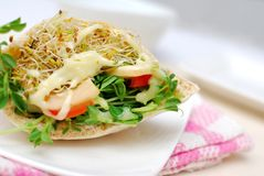 Closeup of healthy pocket salad sandwich Royalty Free Stock Images